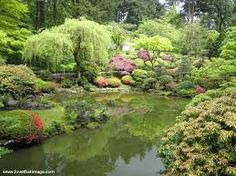 Image result for portland japanese garden summer