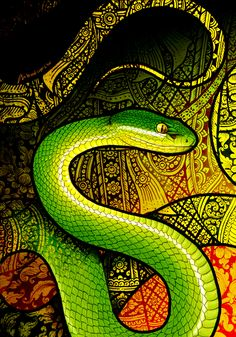 White-Lipped Pit Viper by Culpeo-Fox on DeviantArt Pop Art Posters, Poster Prints, Beautiful Artwork, Cool Artwork, Slytherin, Snake Wallpaper, Mobile Wallpaper, Cobra Art, Colorful Snakes
