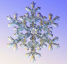Rarely are two snowflakes alike. If you look closely at snowflake shapes, you will see many different variations. Read more from The Old Farmer's Almanac.