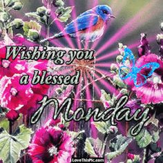 Wishing You A Blessed Monday Gif