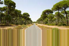Robert Schlaug - 'Limited Area' series