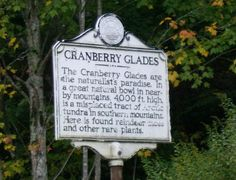 Cranberry Glades, WVA - Google Search