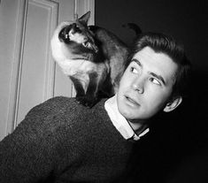 One of my favorite actors. Anthony Perkins, pictured above with a cat, is most notably renown as the highly iconic movie character, Norman Bates of Alfred Hitchcock's Psycho. No doubt he was one of the most charming faces in Golden Hollywood.