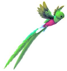 70 Mejores Imagenes De Quetzal En 2020 El Quetzal Ave Nacional De Guatemala Tatuaje De Quetzal