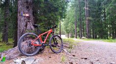 There are plenty of off-road mountain biking routes in Chamonix. Image © David Else / Lonely Planet