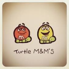 Image result for turtle wayne