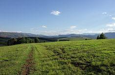 The Drakensberg Plains by Jason Henderson