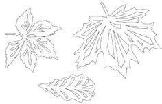 Осінні витинанки (шаблони, малюнки) Leaf Template, Flower Template, Felt Crafts, Diy And Crafts, Paper Crafts, Leaf Stencil, Stencils, Chinese Paper Cutting, Stamp Carving