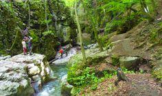 Lombok, Hungary, Golf Courses, Nature, Travelling, Naturaleza, Nature Illustration, Off Grid, Natural