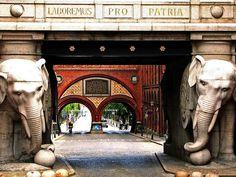 Carlsberg Elephants