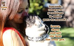 Comparte: Aprende, comparte y consigue lo mejor para tu mascota / Share: Learn, share and get the best for your pet