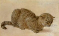 Hans Hoffmann [Germany Painter, 1530 -1591] - 'A Crouching Cat' (16th C),