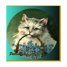 1 1/2 Fabric Cat Button FORGET ME NOTs with Love in my Vintage Wee... (€4,59) ❤ liked on Polyvore featuring home, home decor, vintage home accessories, fabric home decor, handmade home decor, vintage home decor and cat home decor
