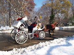 Christmas in New York City, Sleigh ride through Central Park