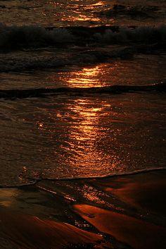 sunset, Kerala, India