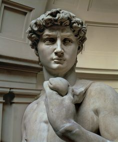 "Michelangelo (Buonarroti) ""David, head of sculpture by Michelangelo Buonarroti (1475-1564)"""