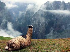 20 razones para viajar a Perú