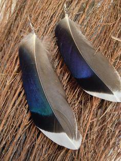 Mallard Duck Feather Earrings Wild Gypsy Boho by AmberDragonfire, $11.00