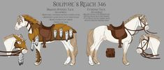 Solitude's Reach 346 Armor and Tack by ReaWolf on DeviantArt