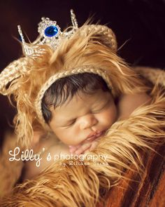 """Prince William"" Crown 