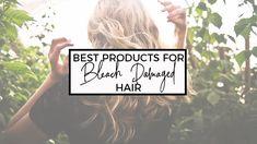 The Best Products for Bleach Damaged Hair - LifeStyled by Erin Bleach Damaged Hair, Bleached Hair Repair, Bleaching Your Hair, Blonde Highlights With Lowlights, White Blonde Hair, Diy Hair Mask, Strong Hair, Hair Care Routine, Hair Health