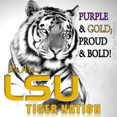 Tiger Nation!