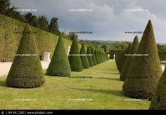 Jardines de Versalles, Francia
