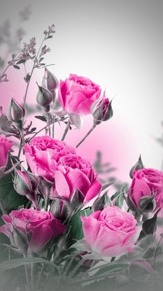 Abstract Rose Wallpaper - Elegant Abstract Rose Wallpaper , Pin by Jazmine Oleander On Art Beautiful Roses, Pink Flowers, Beautiful Flowers, 3d Rose, Love Rose, Flower Phone Wallpaper, Flower Wallpaper, Wallpapers For Mobile Phones, Mobile Wallpaper
