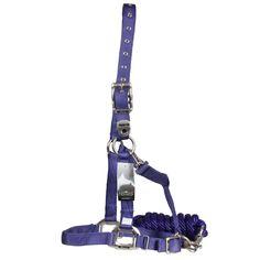 Violet Horses Halter + Rope