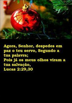 REFLEXÃO: VERSÍCULO DO DIA 16/12/2015 LUCAS 2:29,30
