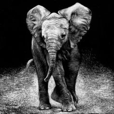 Amazing Expressions in Scratchboard Animals Portraits. Beautiful drawing work by Melissa Helene that conveys the animals' emotions. More information & more images from this Artist, Press the Image.