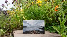 Lands End, ME. Oil landscape painting Tucked away in the part of the garden where I go to watch the fairies at dusk. Palette Knife Painting, Lands End, Dusk, Landscape Paintings, Fairies, Oil, Watch, Garden, Plants