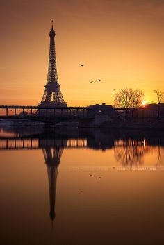 The morning of Eiffel Tower. The artistic conception is made by the color of sunshine and the flying birds in distance.  #semiphoto
