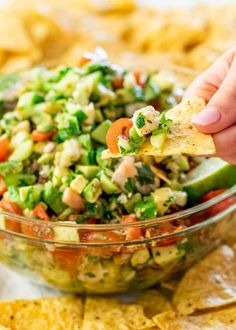 Avocado Shrimp Salsa is the perfect appetizer using fresh and delicious ingredients. End result is bold flavors and one great salsa, ready in only 20 minutes! Great for parties, game day, or a fresh summer snack. Mexican Appetizers, Shrimp Appetizers, Appetizers For Party, Appetizer Recipes, Party Recipes, Fondue Recipes, Dessert Recipes, Desserts, Shrimp Salsa Recipe