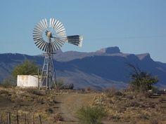 Karoo Flower Landscape, Landscape Photos, Landscape Photography, Building Painting, Old Farm Houses, Windmill, Beautiful Landscapes, South Africa, Homeland