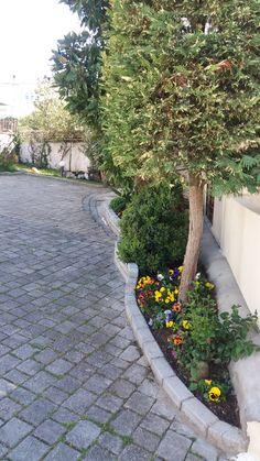 Gardening idea's by Chrysa