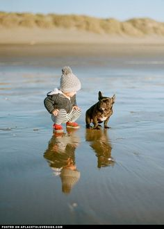 Best Friends • APlaceToLoveDogs.com • dog dogs puppy puppies cute doggy doggies adorable funny fun silly photography