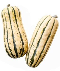 Delicata | Learn how to identify and prepare eight popular winter squash varieties.