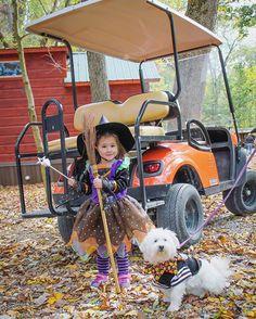 Luxury Cabins Yogi Bear S Jellystone Park Hagerstown