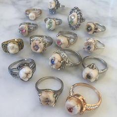Tooth Ring for Vampires Weddings Vampire Wedding, Human Teeth, Unusual Rings, Creepy Cute, Tooth Fairy, Jewelry Rings, Weird Jewelry, Jewellery, Sorbet