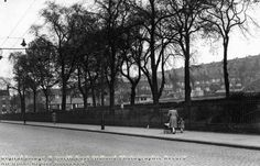 King Edward Park, Carlton Road, Sneinton, Nottingham, 1950
