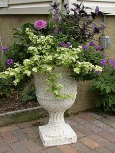 Gardening Inspiration - W/ small border/container Dahlias Container Flowers, Flower Planters, Container Plants, Flower Pots, Outdoor Planters, Outdoor Landscaping, Outdoor Gardens, Modern Planters, Concrete Planters