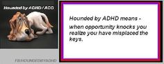 ADHD, Adult Attention Deficit Disorder. ADD. Also on FB/Hounded by ADHD.