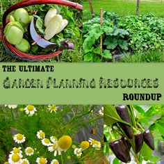 here is a list of some of the best garden planning resources you can find!