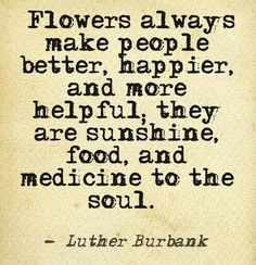 """Flowers always make people better, happier, and more helpful; they are sunshine, food, and medicine to the soul."""