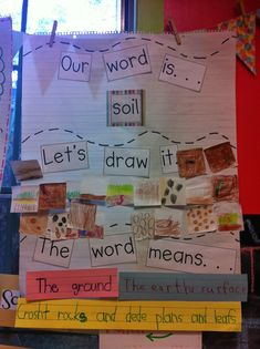 Anchor chart used to demonstrate students ability to create sentences using vocabulary words that connect to a certain content area in reading. 1st Grade Science, Kindergarten Science, Science Classroom, Teaching Science, Teaching Reading, Kindergarten Reading, Classroom Ideas, Student Learning, Teaching Vocabulary