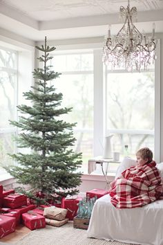 That Tree!!!