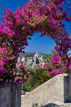 A view from a house in Chios island, Greece Bougainvillea, Dream Vacations, Vacation Spots, Places To Travel, Places To See, Places Around The World, Around The Worlds, Chios Greece, Beautiful World