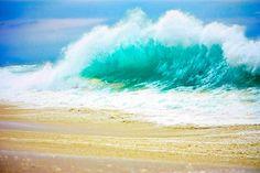 Seignosse Shorebreak