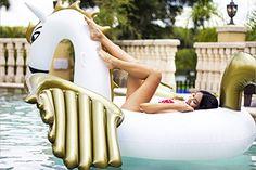 Giant Inflatable Pegasus Pool Float